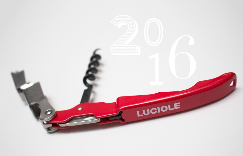 Vœux 2016 - LUCIOLE