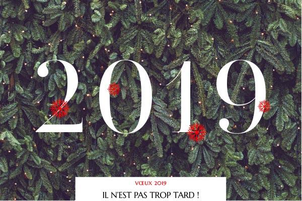 Vœux 2019 - Luciole
