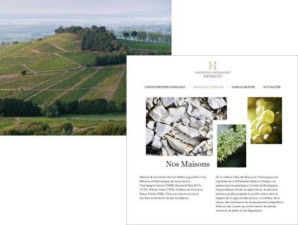 Site corporate - Maisons et Domaines Henriot - Blog Luciole