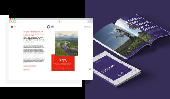 AFD - Datawall 2019 - 2020 - Blog Luciole